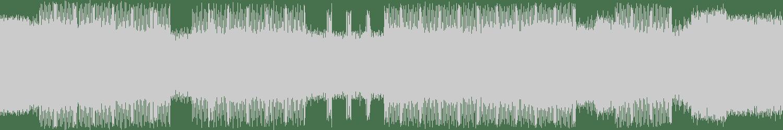 DJ Loser - Misery Loops 5 (Original Mix) [VEYL] Waveform