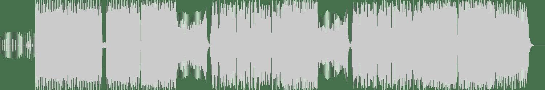 Distal - Psychomagic in an Adobe Home (Original Mix) [Anarchostar] Waveform