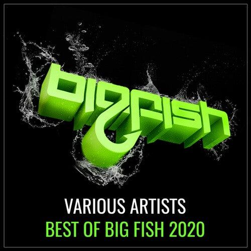 Best of Big Fish 2020