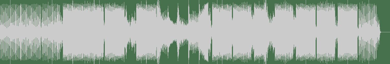 Matt Capitani, Nogger - Acid Slapping (Original Mix) [Caterpillar Trax] Waveform