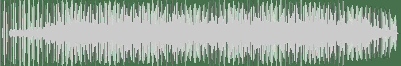 DJ Biopic - New York City (Original mix) [Fleur du Mal Records] Waveform
