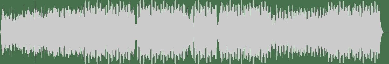 Deep Spirit - Still Lonely - Edition Two (Tbm Dj Radio Edit) [Vinyl Loop Records] Waveform