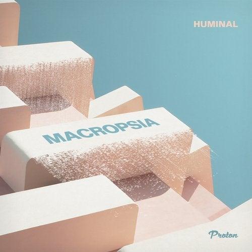 Macropsia