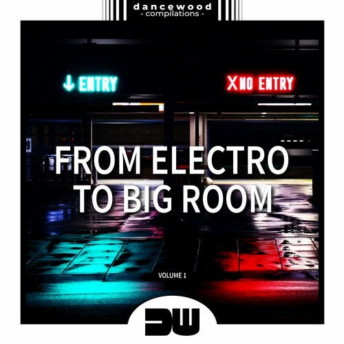 From Electro To Big Room, Vol. 1