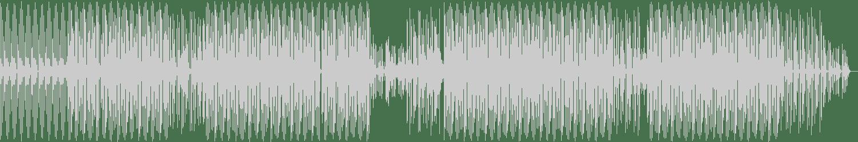 Oliver Deuerling - Wookie Wonderland (Instrumental Mix) [Pron Records] Waveform