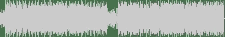Marco Remus - Bitch Better Have No Money (Original Mix) [Nerven Records] Waveform