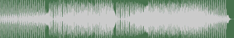Passenger 10 - Avantgarde (Original Mix) [Club Session] Waveform