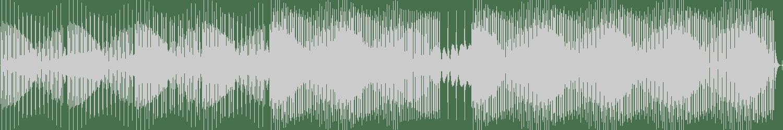 Proudly People - Hausmaus (Original Mix) [Venice Music] Waveform