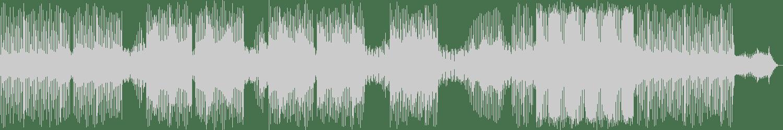 DJ Funsko - Disco Motion - Why Funsko Love's House Music (Original mix) [Fleur du Mal Records] Waveform