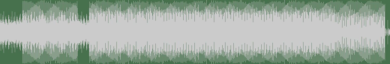 Rudy S - Fabric (Davide Cali remix) [Animus] Waveform