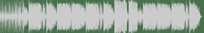 Micky Dizzal - Vanish (Original Mix) [SODA Tracks] Waveform