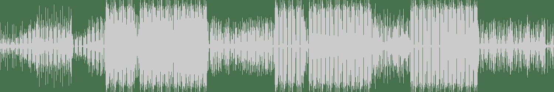 Monista - Mad (Original Mix) [Diverside] Waveform