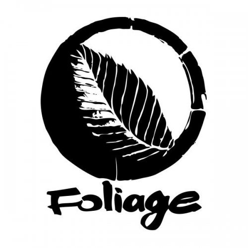 Foliage Records Releases & Artists on Beatport