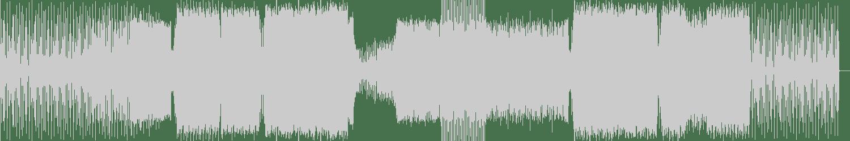 Denzal Park - Supersonic (Original Mix) [Neon Records] Waveform