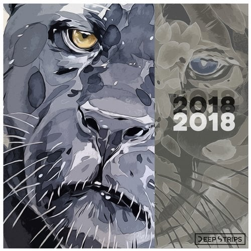 Deep Strips 2018