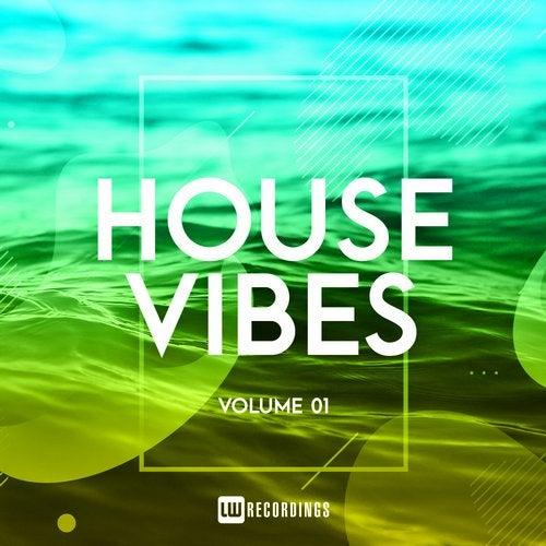 House Vibes, Vol. 01