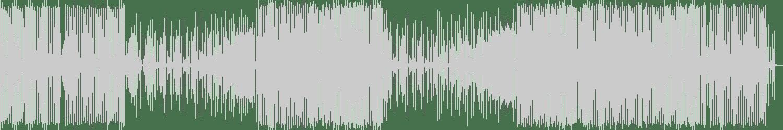 ElectroDan - FY (Original Mix) [LW Recordings] Waveform
