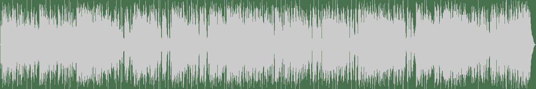 Fernando - Transcendental Grater (Original Mix) [L.I.E.S. Records] Waveform
