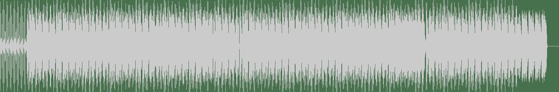Roman Rai - Mystical Hill (Original Mix) [Deepwave] Waveform