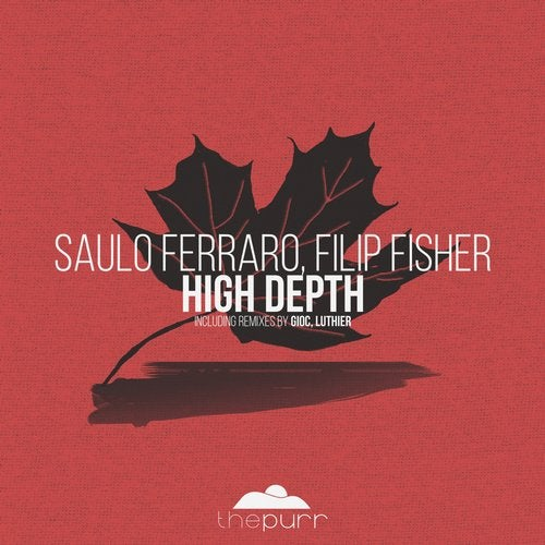 Luthier Releases on Beatport