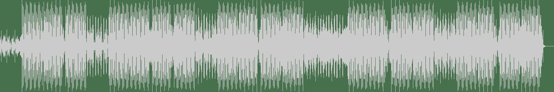 Ernest Oh, Calypse - Without Age (Original Mix) [Natura Viva] Waveform