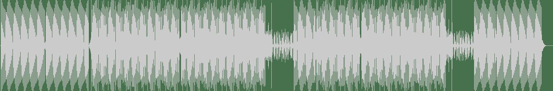 Future Mind - Voice Is Up (Future Mix) [Hey DJ!] Waveform