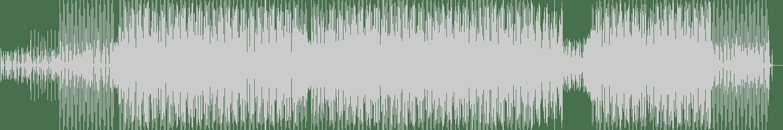 Benjamin Shock - Feel Da Phunk (Original Mix) [Lowtemp] Waveform