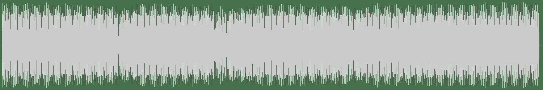 Slam - Room 2 (Original Mix) [Paragraph] Waveform