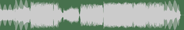 Memory Loss - Ambivalent (Original Mix) [Silent Shore Records] Waveform