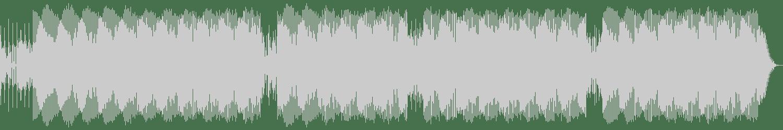 Joey Beltram - Fuzz (Original Mix) [Trax Records] Waveform