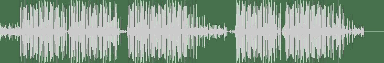 Pedro Martin - Los Viajes del Che (Original Mix) [Ritmikal Records] Waveform