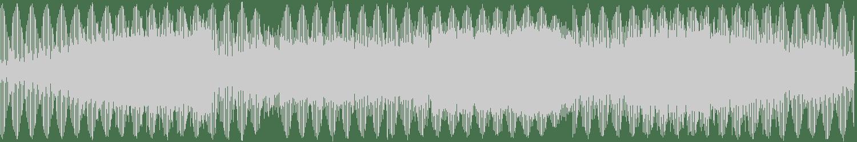 Heretic - Pollux (Original Mix) [Nein Records] Waveform
