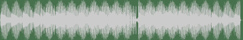 Pinto - Coeur De Pierre (Original Mix) [Neim] Waveform