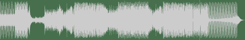 Austin Leeds, Vlad Rusu, Redhead Roman - Everybody (Original Mix) [Bonerizing Records] Waveform