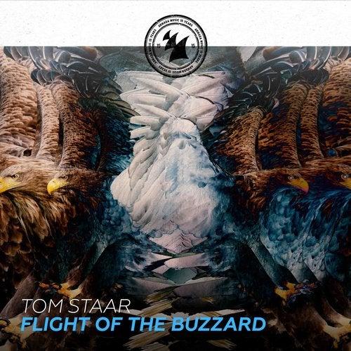 tom Staar – Flight Of The Buzzard ile ilgili görsel sonucu