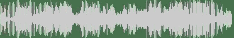 Do Shock Booze, J.A.K.A.M. - WARRIORS feat. J.A.K.A.M. (Acid Tech Mix) [Totem Traxx] Waveform