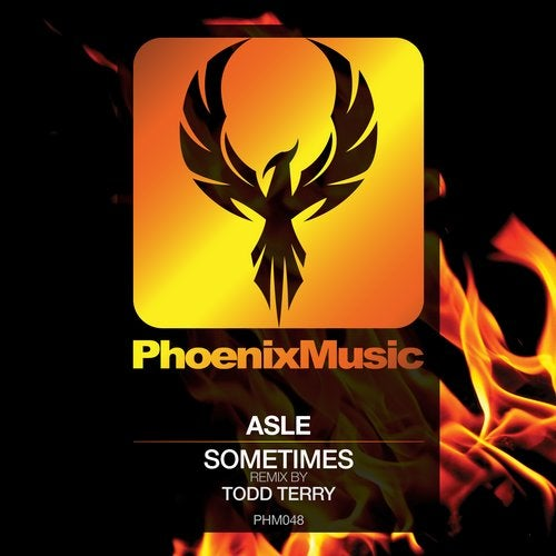 Sometimes (Todd Terry Remix)