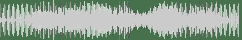Hammer - Panoptic (Original Mix) [Feel My Bicep] Waveform