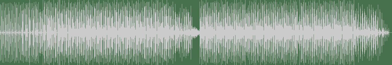 Einklang Freier Frequenzen - Riot Jazz (Original Mix) [Eintakt Records] Waveform