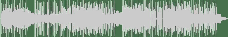 Leonard De Leonard - Elephantizer (Digikid84 Remix) [Folistar] Waveform
