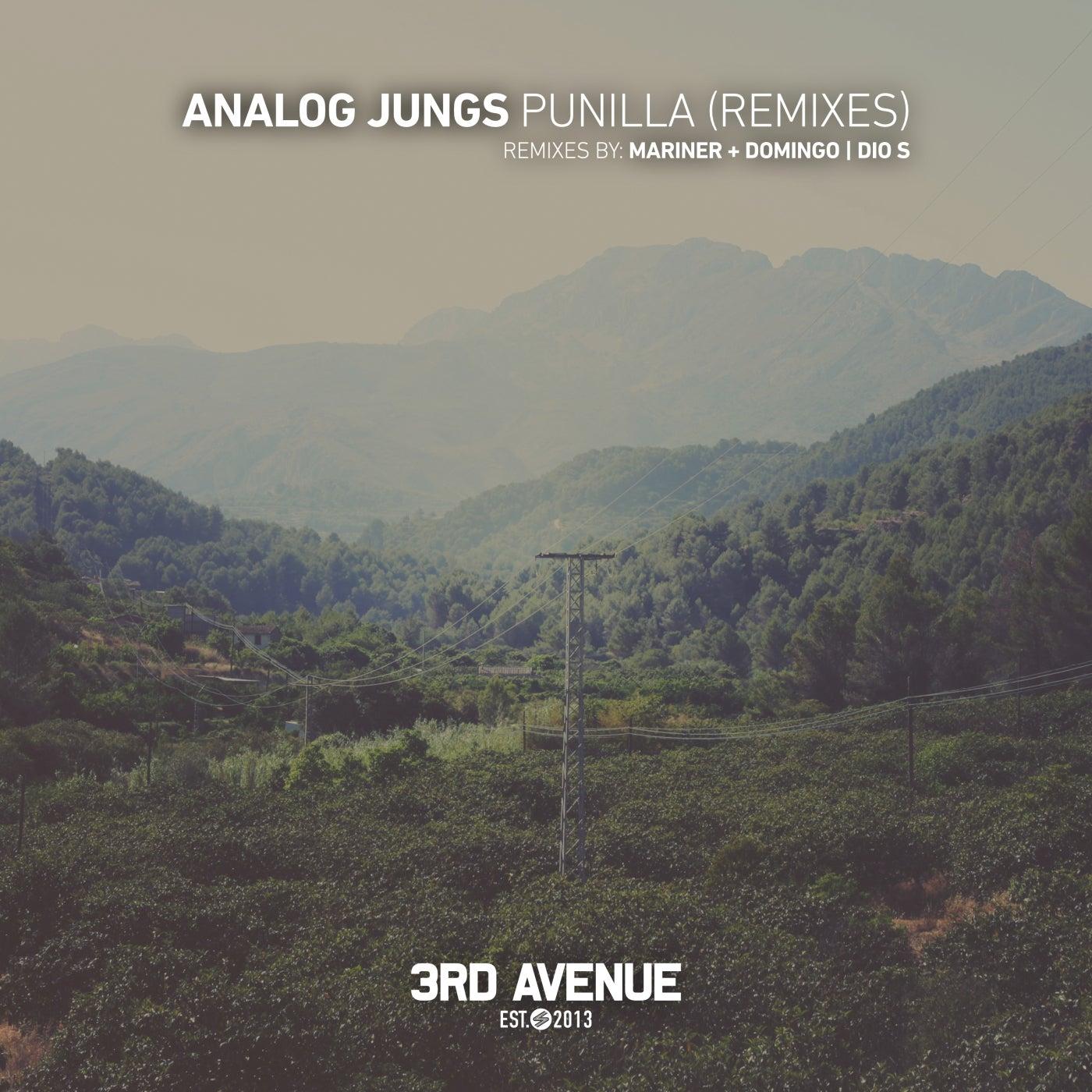 Punilla (Remixes)
