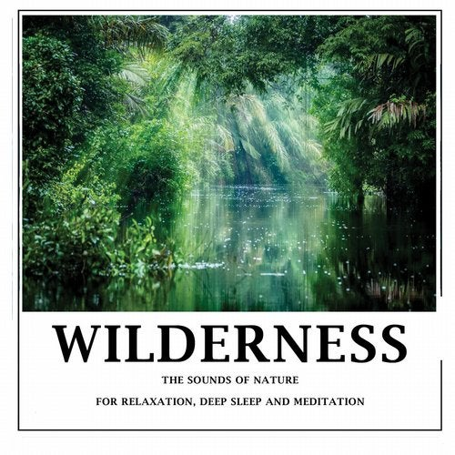 Wilderness - Pure sounds of nature for relaxation,deep sleep and meditation