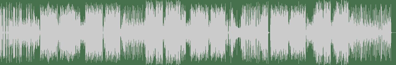 Municipal Youth - deFunk (Original Mix) [EDM Records] Waveform