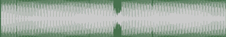 Li-Polymer - Endless Time (Diogo Ribeiro Remix) [Movement Recordings] Waveform