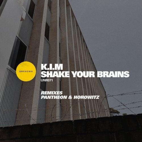 Shake Your Brains