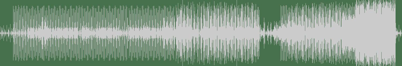 Luca Citoli - Birds on Strings (Original Mix) [MZK Work] Waveform