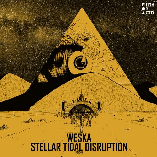 Stellar Tidal Disruption