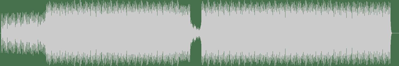 Seba, Krazy - Arsenic (Original Mix) [Innerground Records] Waveform
