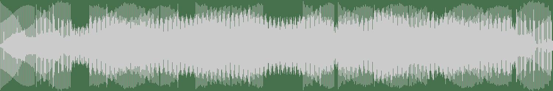 Mass Digital - AutoBot (Original Mix) [Share Records] Waveform