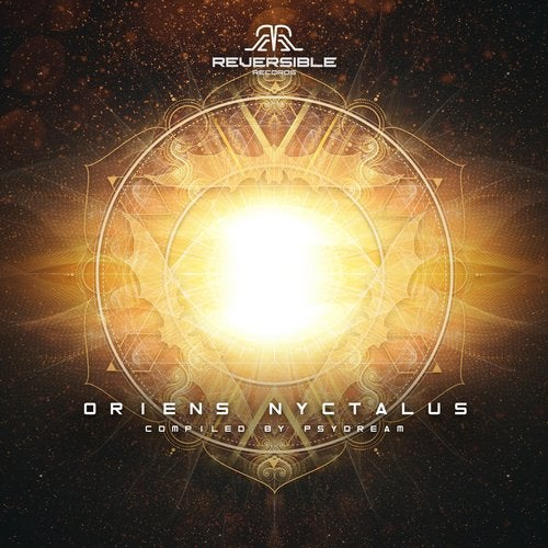 Oriens Nyctalus